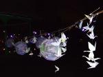 childrens-lights-on-arnold-circus-16thdec08-004