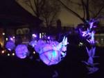 childrens-lights-on-arnold-circus-16thdec08-0051
